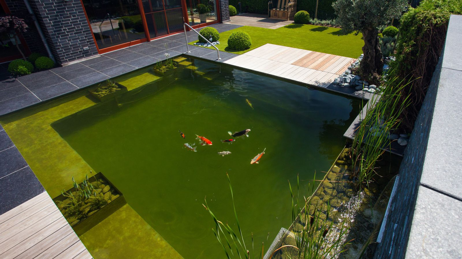 1.16 Wasser im Mittelpunkt - Garten mit Naturschwimmteich in Merhoog