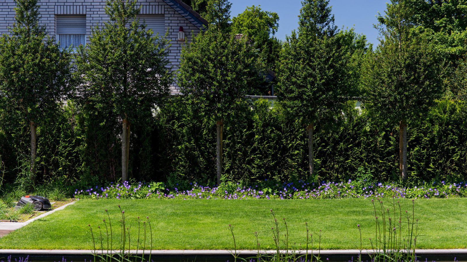 1.15 Moderner, sonniger Familiengarten in Ratingen